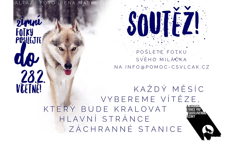 Záchranná stanice pro Československé vlčáky